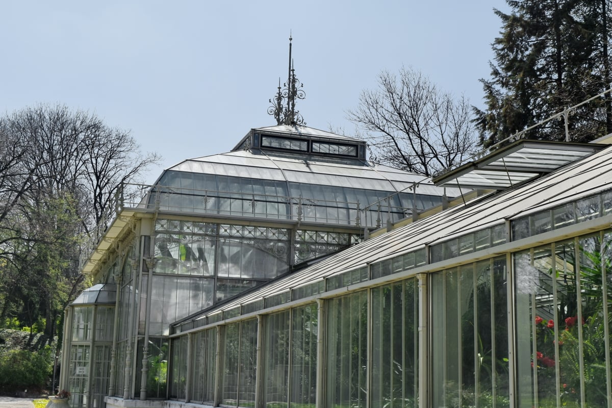 botanical, capital city, garden, architecture, greenhouse, structure, building, window