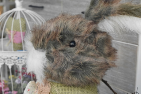 decoration, toys, toyshop, fur, rabbit, animal, cute, portrait
