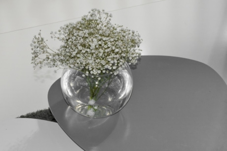 flowers, minimalism, still life, vase, glass, flower, nature, flora