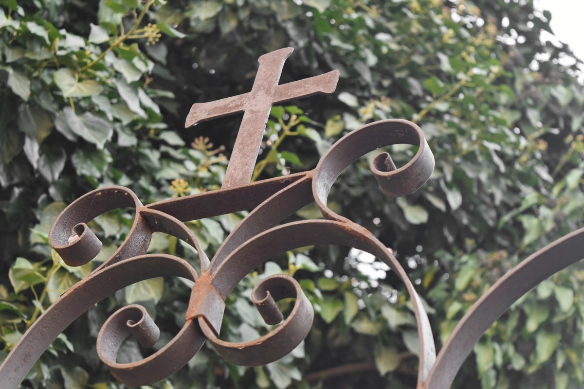 cast iron, christianity, cross, ivy, religion, religious, rust, nature