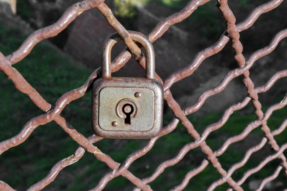 padlock, fastener, lock, iron, security, fence, steel, safety