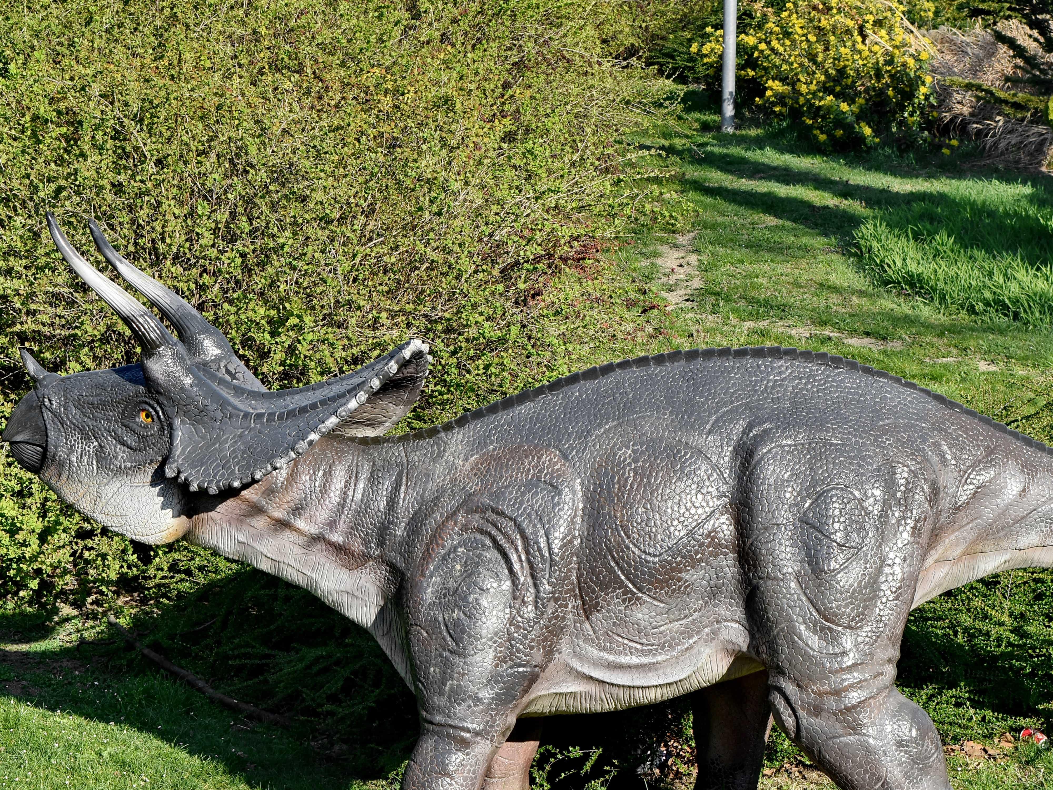 Картинки динозавров мир юрского периода эволюция декоративная собачка