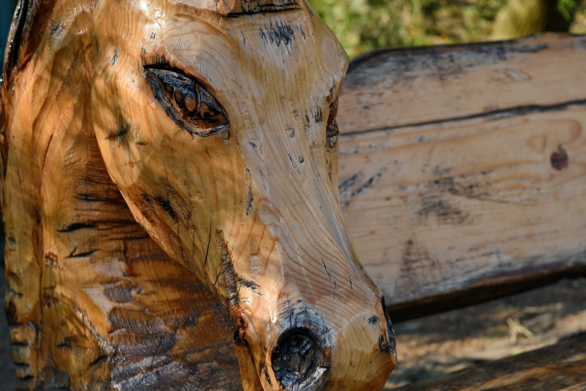 carving, sculpture, nature, tree, wood, outdoors, wooden, old