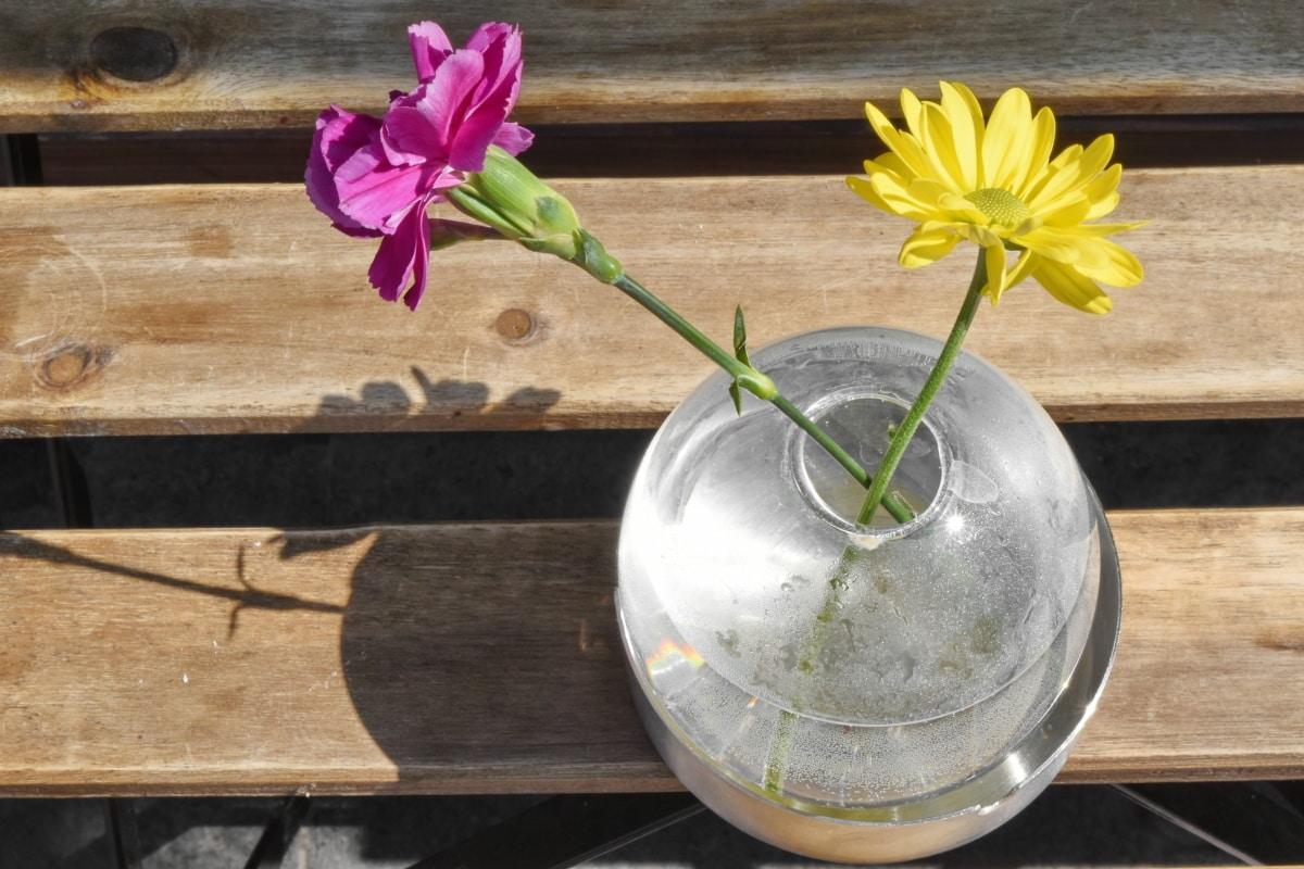 carnation, glass, pink, still life, vase, water, yellow, flower