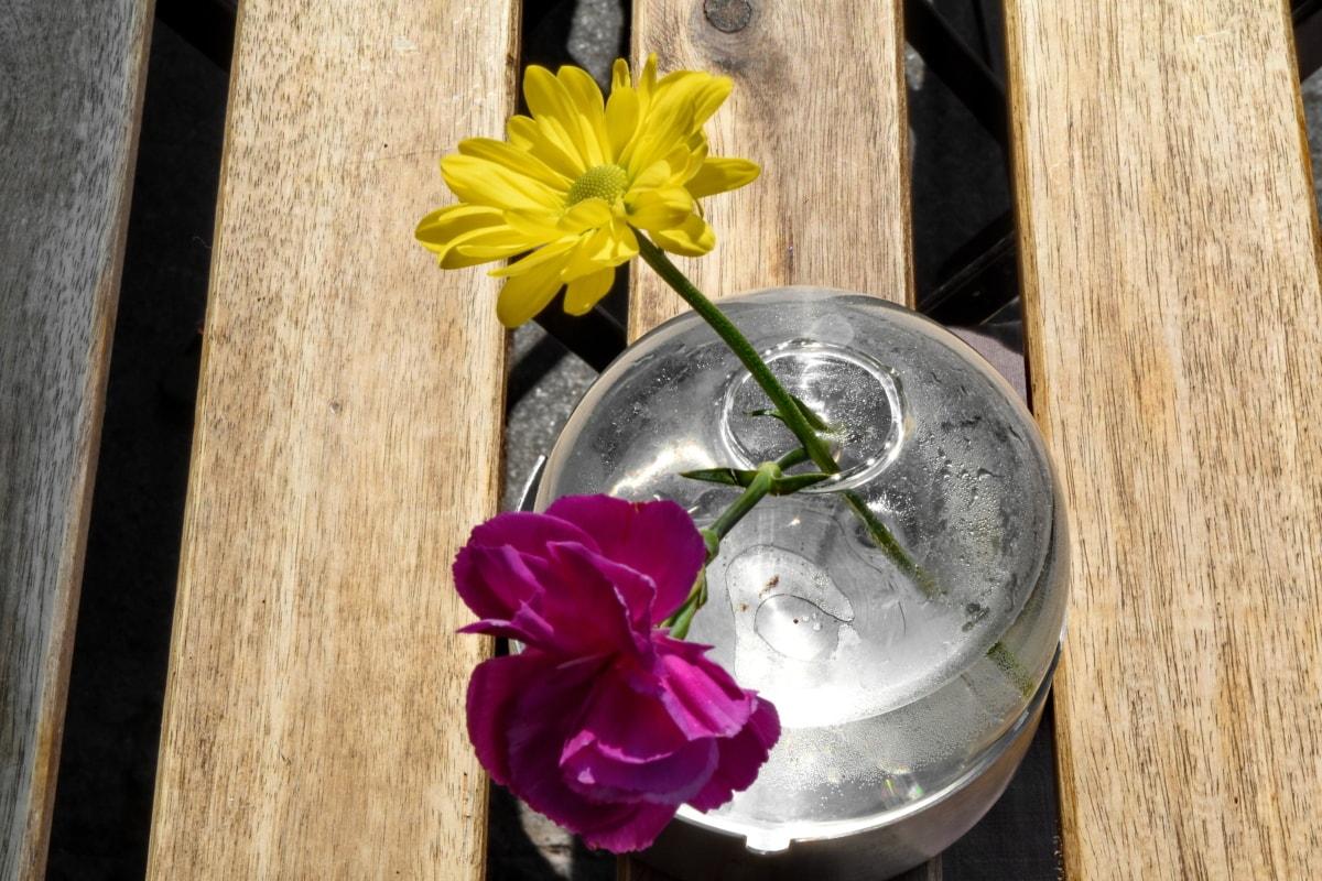 Clavel, decoración, tiempo de primavera, florero de, flor, hoja, flora, vidrio