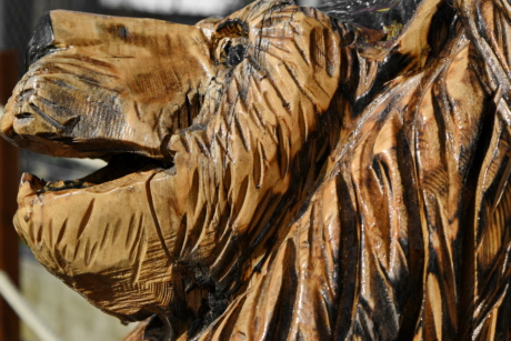 lion, wooden, sculpture, carving, nature, art, portrait, pattern