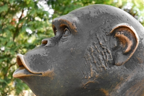 bronze, metal, monkey, portrait, outdoors, daylight, sculpture, animal