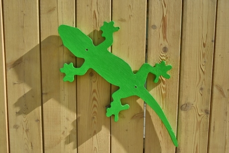 lizard, object, wooden, wood, oak, hardwood, wall, board