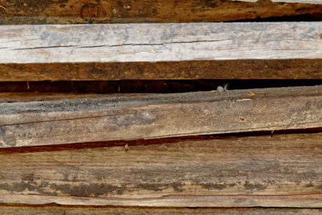 carpentry, old, wall, board, wood, texture, hardwood, surface