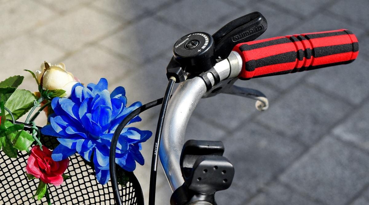 cesta, decoração, flores, câmbio de marchas, volante, equipamentos, roda, bicicleta