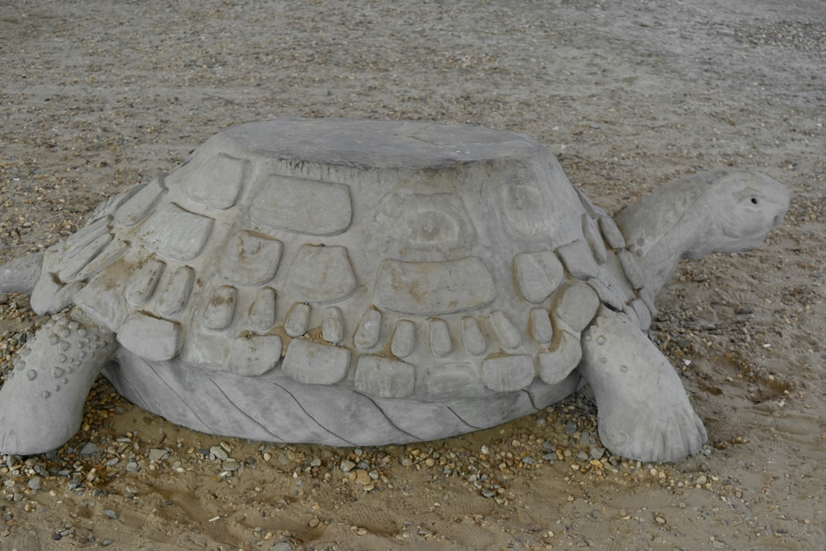 concrete, sculpture, turtle, sand, covering, beach, reptile, summer