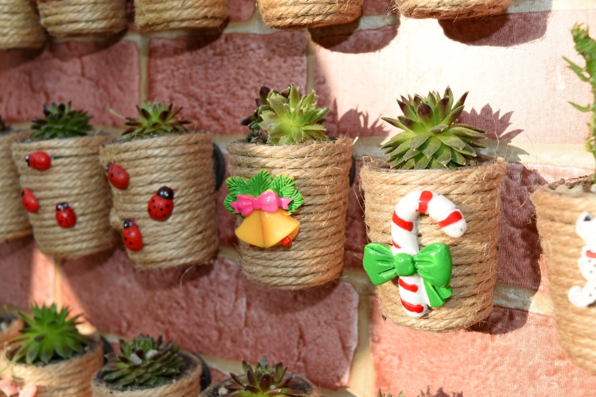 cactus, decoration, flowerpot, handmade, traditional, color, upclose, flower