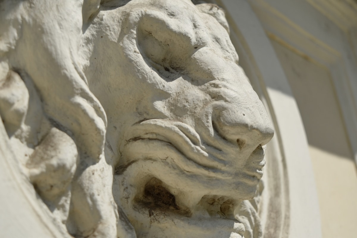lion, profile, sculpture, wall, art, statue, ancient, marble