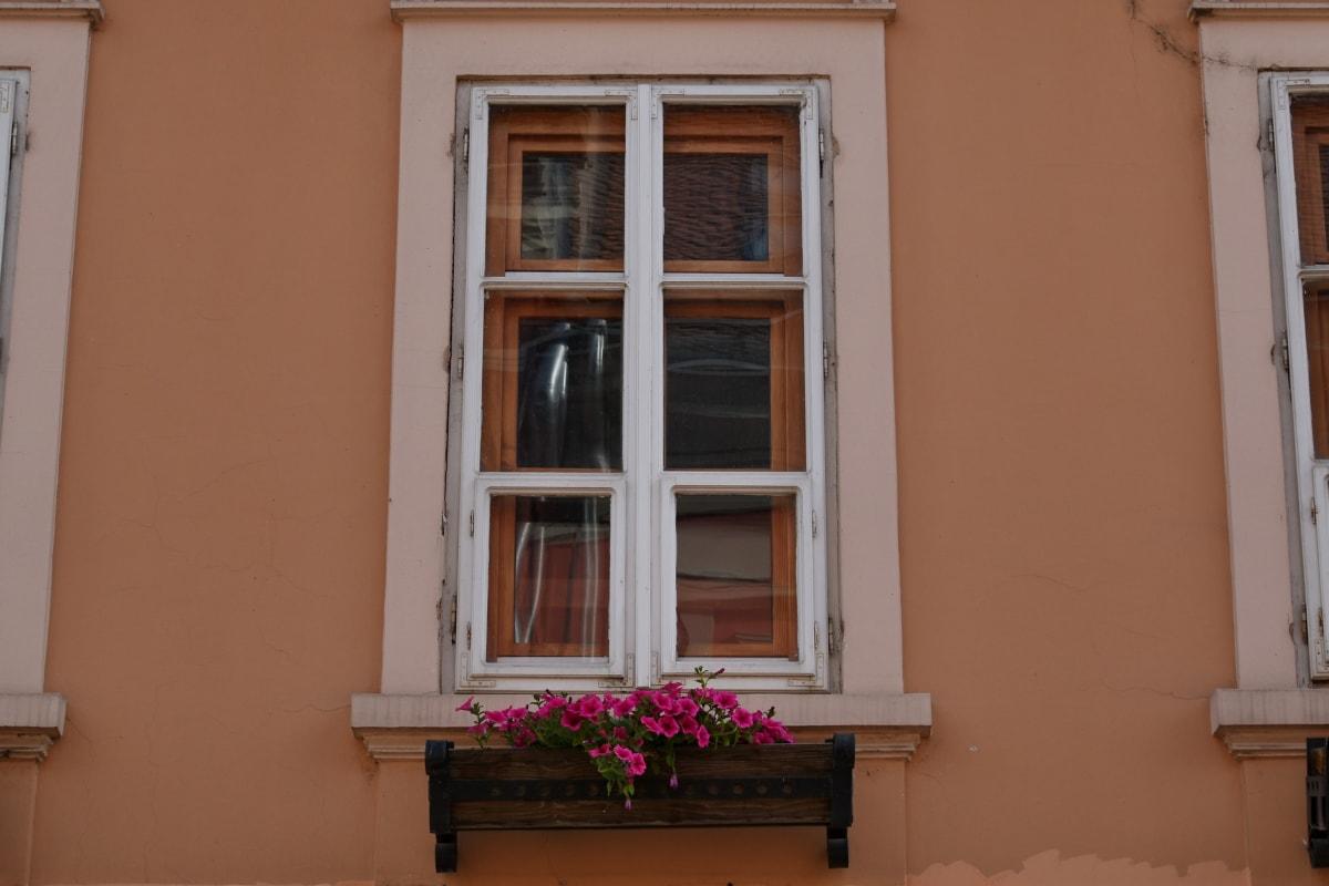 facade, flowerpot, windows, house, window, architecture, home, interior design, indoors, wood