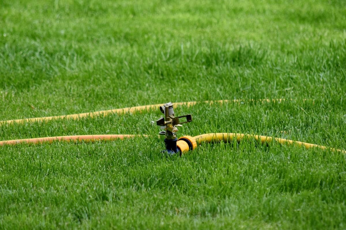 slavina, zelena trava, crijevo, navodnjavanje, mehanizam, trava, polje, uređaj, travnjak, ljeto