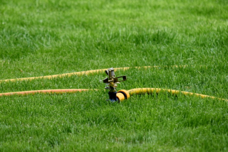 faucet, green grass, hose, irrigation, mechanism, grass, field, device, lawn, summer