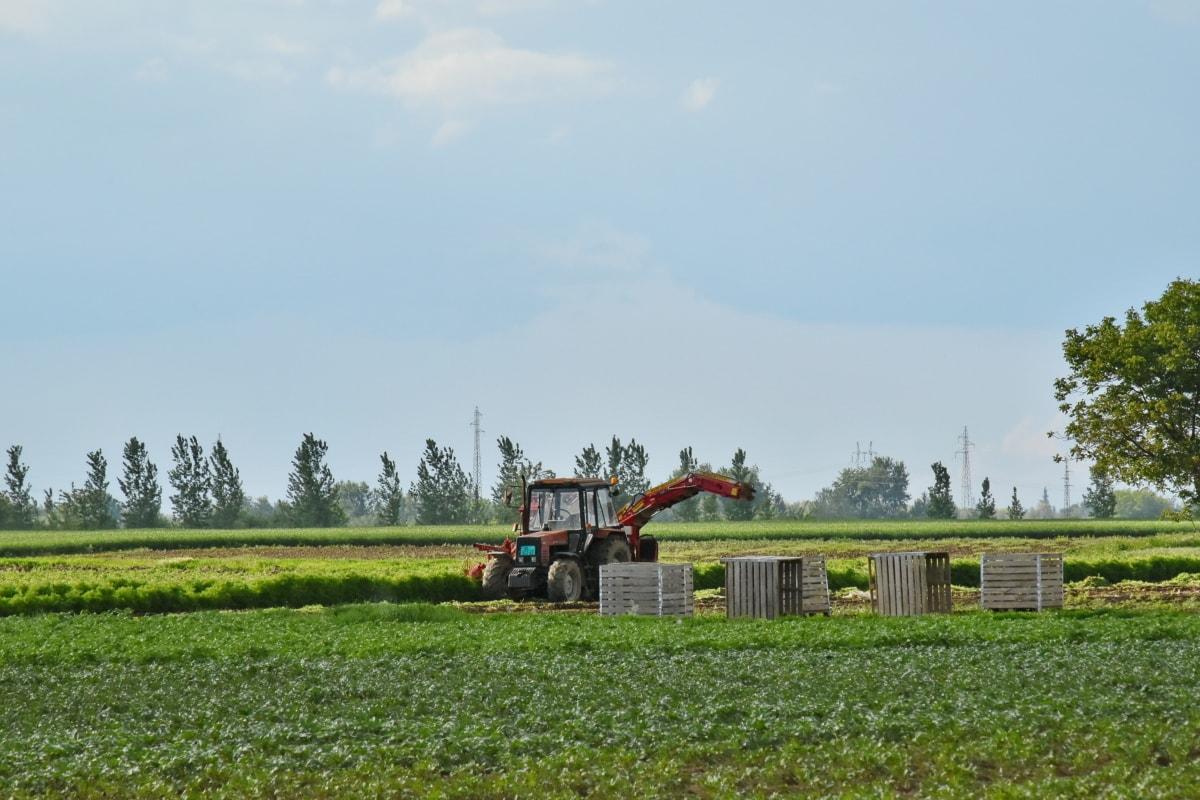 poljoprivredno zemljište, traktor, kombajn, mašina, uređaj, krajolik, farma, poljoprivreda, polje, drvo