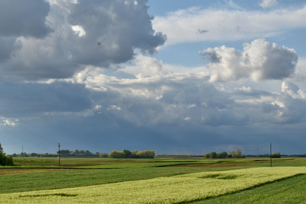 agrícola, nubosidad, tiempo en Feria, campo, Wheatfield, paisaje, césped, campo, rural, agricultura