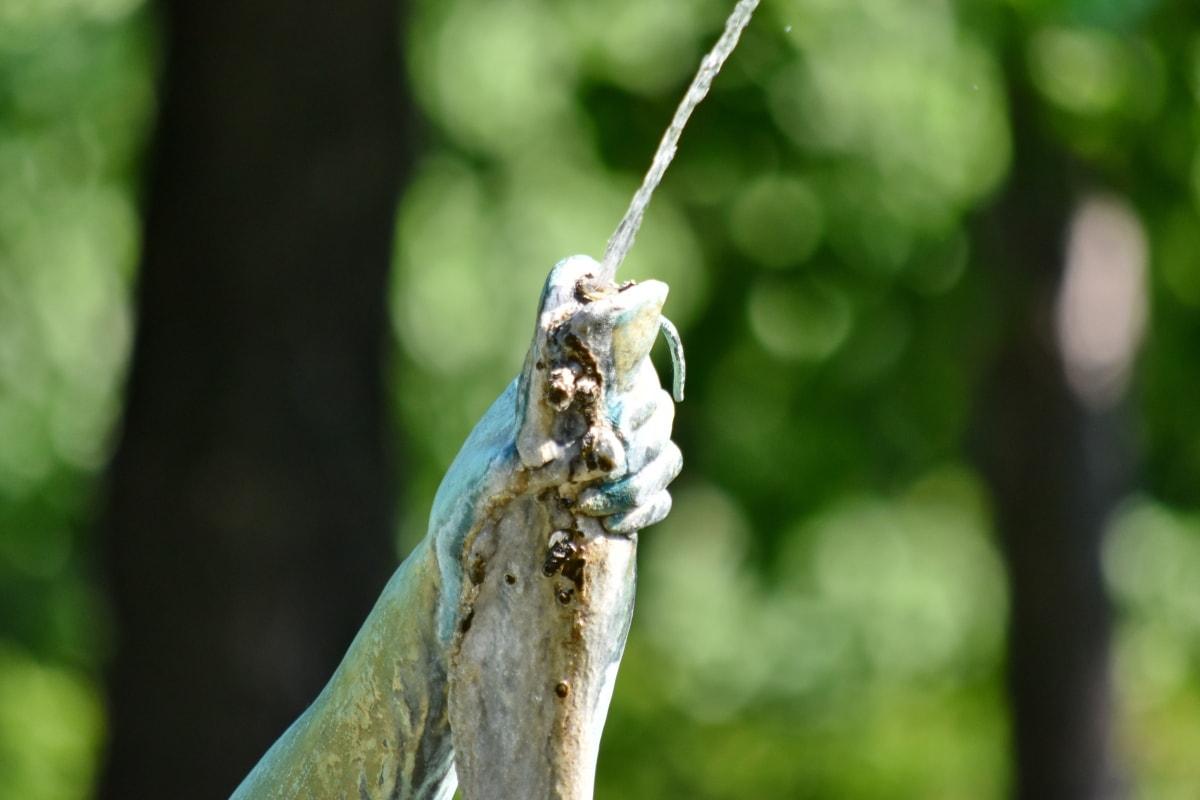 bronze, fish, fountain, hand, water, nature, invertebrate, outdoors, tree, garden