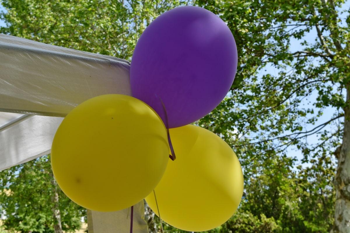 rođendan, dekoracija, helij, balon, proslava, obrt, ljeto, priroda, na otvorenom, list