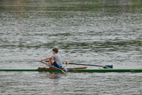 athlete, sport, water, oar, competition, race, paddle, action, recreation, river