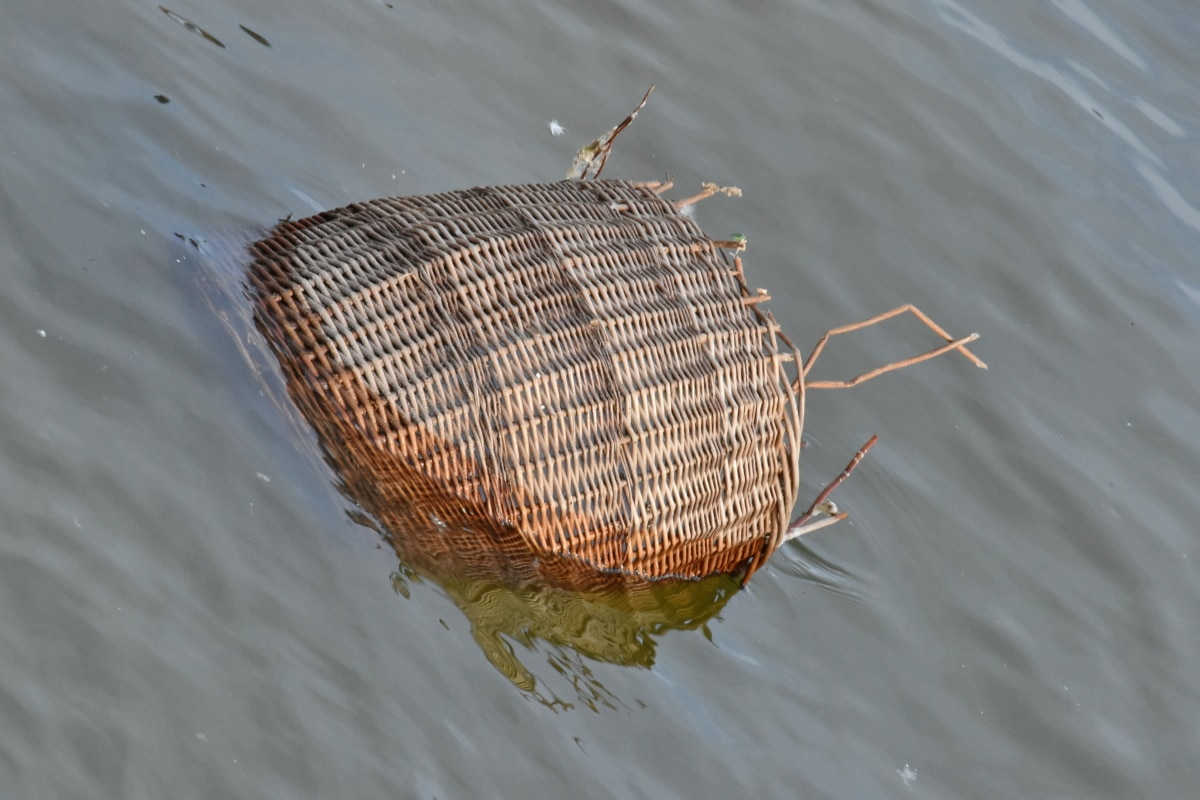 flood, garbage, wicker basket, wood, water, nature, lake, river, reflection, environment