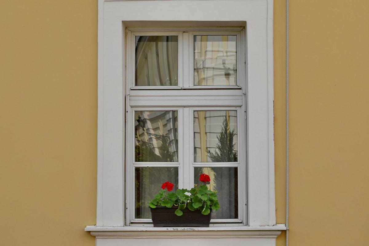 fachada, vaso de flor, janela, peitoril, casa, madeira, arquitetura, Casa, parede, porta