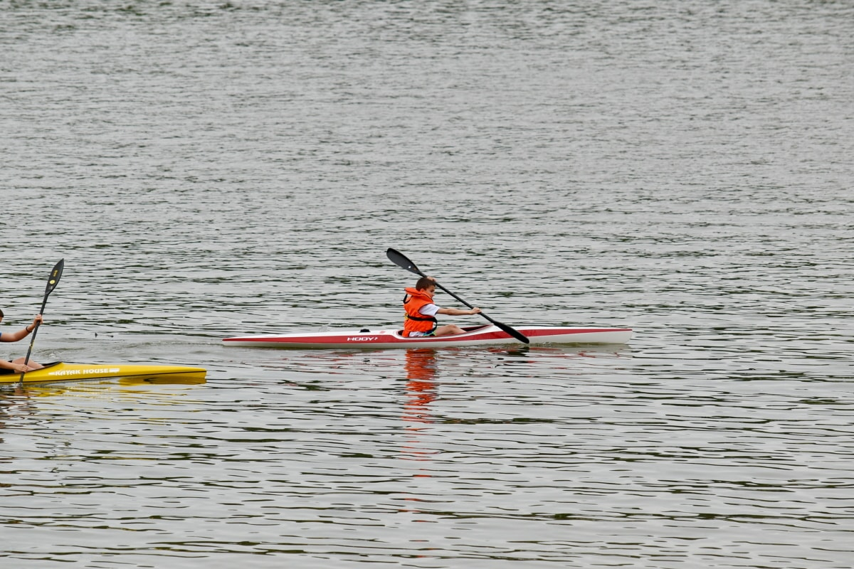 championship, sport, tournament, oar, canoe, paddle, device, kayak, water, sea