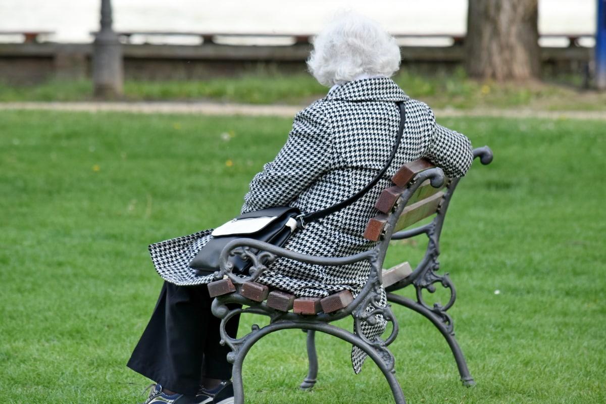 bench, elderly, grandmother, pensioner, grass, outdoors, park, lawn, summer, outside