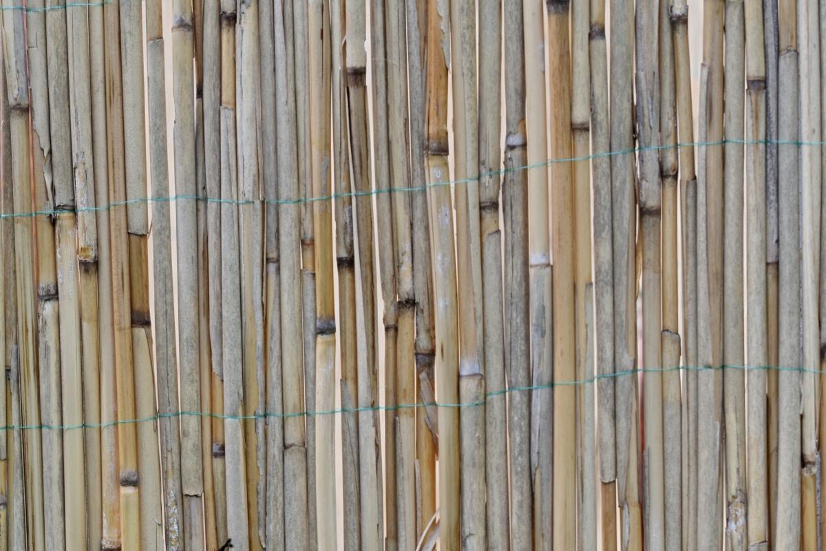 drewniane, ściana, panelu, stary, wzór, drewno, tekstury, Projektowanie, Budowa, tkaniny