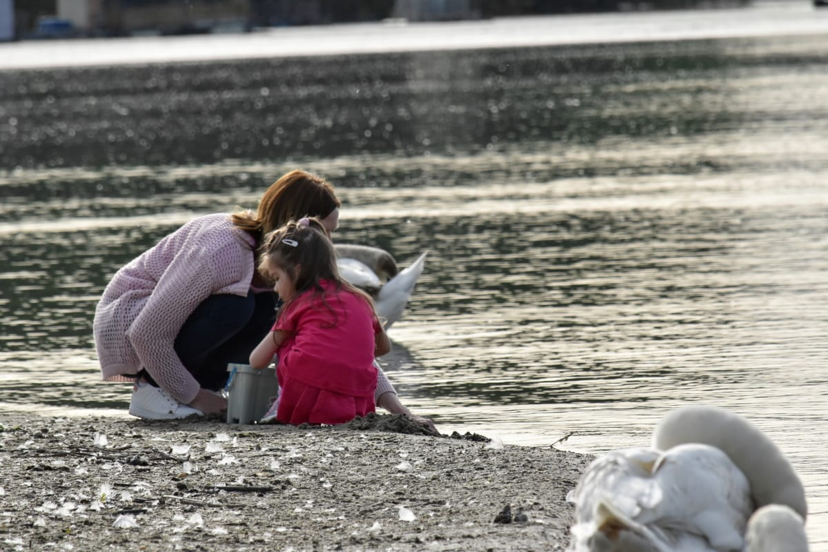 pláž, Detstvo, materstvo, ľudia, labuť, vonku, žena, voda, dievča, mladý