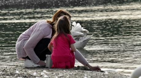 bird, daughter, motherhood, riverbank, swan, togetherness, water, people, woman, outdoors