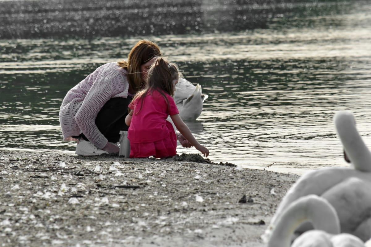 dcéra, matka, labuť, pláž, ľudia, voda, dievča, dieťa, žena, príroda