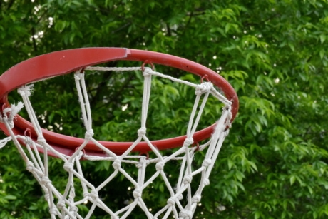 game, basketball, leisure, recreation, web, ball, basket, sport, outdoors, playground