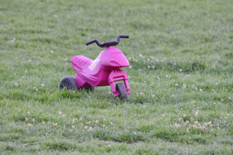 toy, tricycle, conveyance, park, grass, summer, nature, outdoors, lawn, leisure