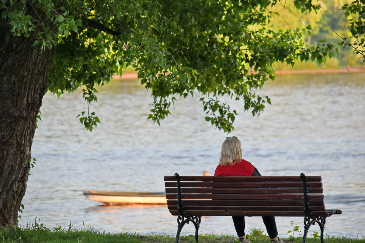 relaxation, river, woman, seat, leisure, furniture, outdoors, bench, water, tree