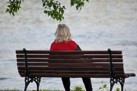 blonde hair, woman, bench, park, outdoors, seat, nature, leisure, water, summer