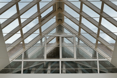 atrium, ceiling, metal, roof, steel, window, structure, building, architecture, perspective