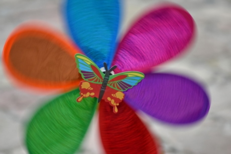 butterfly, colorful, toy, wind, wind turbine, color, bright, beautiful, upclose, decoration