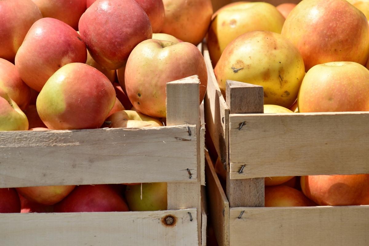 doboz, szerves, élelmiszer, piac, gyümölcs, friss, termék, Alma, fa, farm