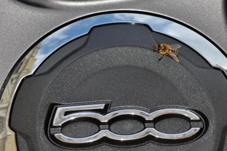 honeybee, insect, metallic, sign, car, vehicle, chrome, industry, steel, wheel