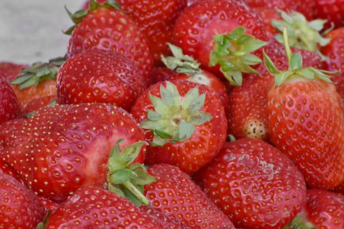 agriculture, strawberry, berry, delicious, health, strawberries, food, nutrition, leaf, summer