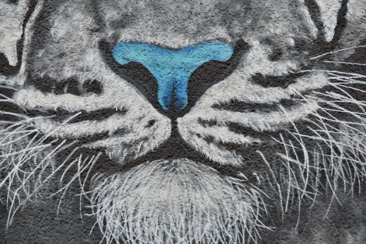 graffiti, usta, nos, Tygrys, Tiger moth, tekstury, Abstrakcja, Projektowanie, Natura, wzór