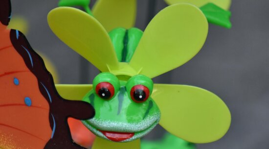 frog, plastic, propeller, toys, machine, wheel, fun, color, nature, funny