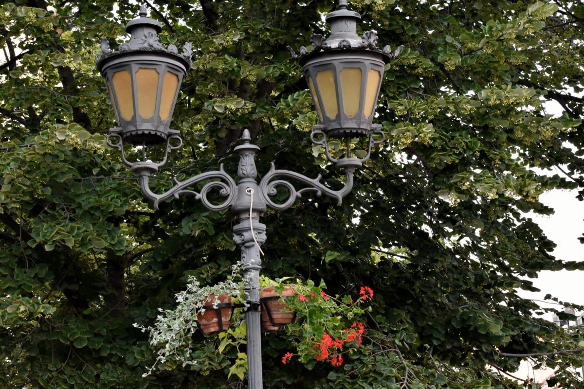 dagslys, blomsterpotte, lampe, gate, treet, urbane området, struktur, lykt, hage, gamle