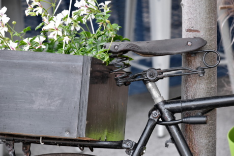 bicycle, black, decoration, flowerpot, old, seat, wheel, bike, street, outdoors