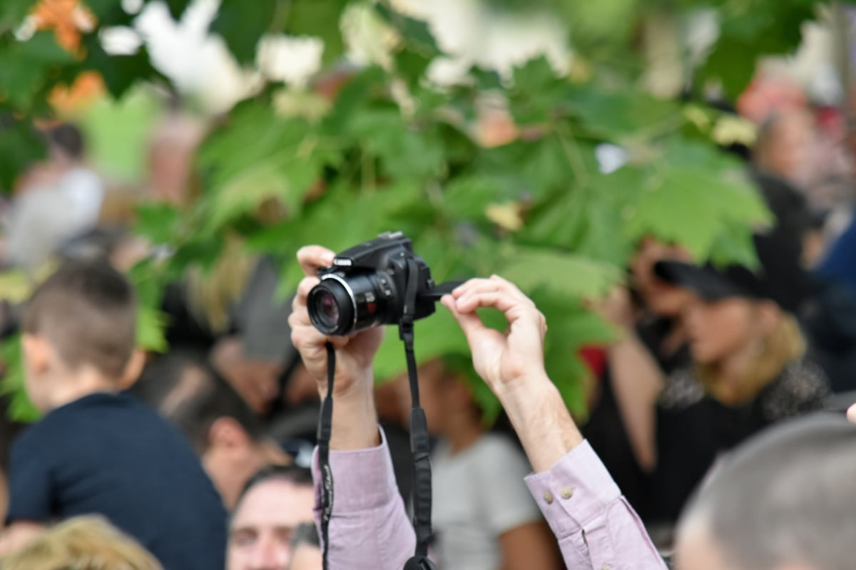 folla, paparazzi, fotografo, fotografia, spettatore, uomo, donna, giornalista, persone, natura