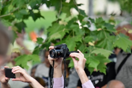 ceremony, crowd, photographer, photography, nature, outdoors, leaf, lens, summer, focus