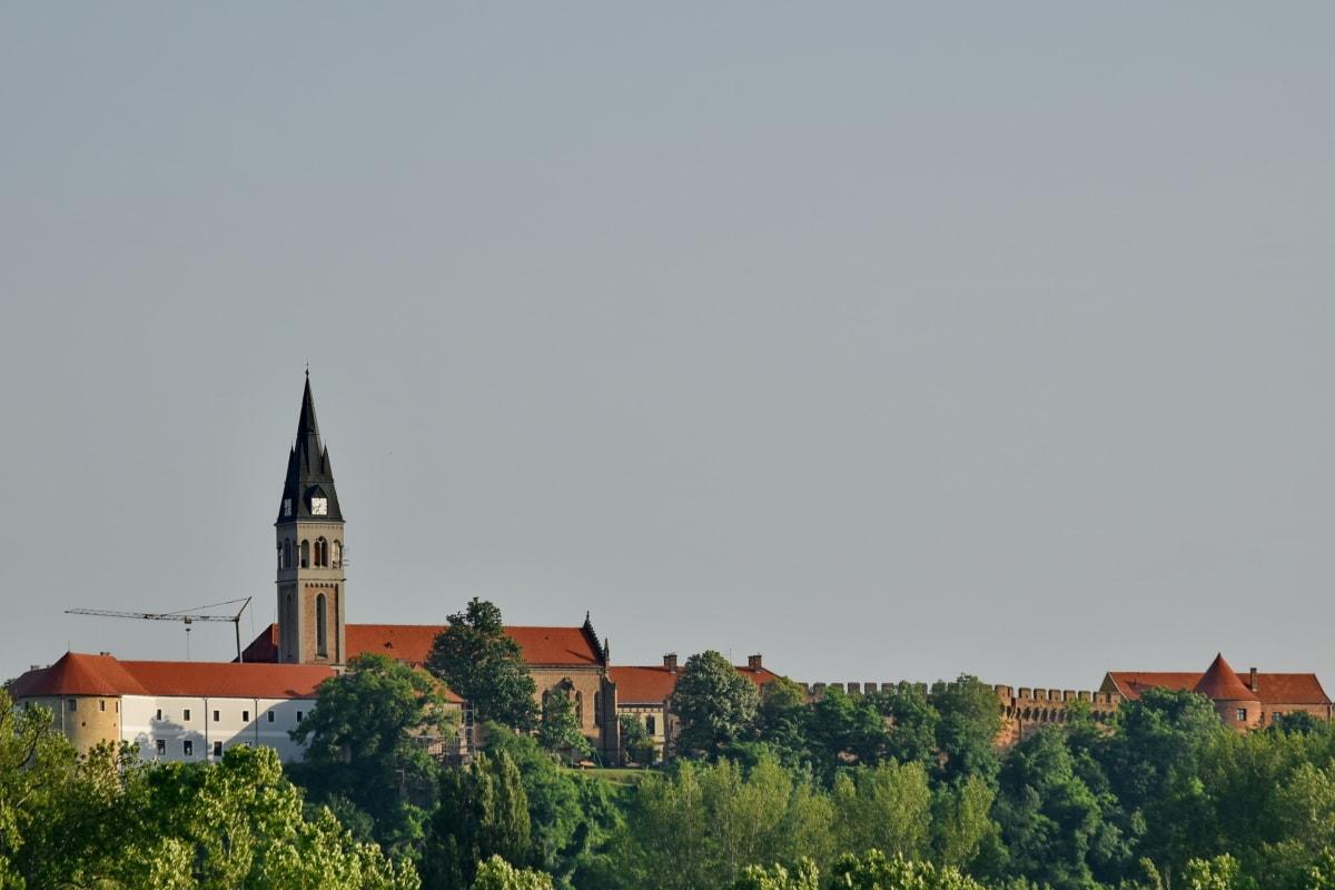 Zamek, wieża kościoła, lasu, na wzgórzu, Klasztor, obszar miejski, Pałac, Kościół, budynek, architektura