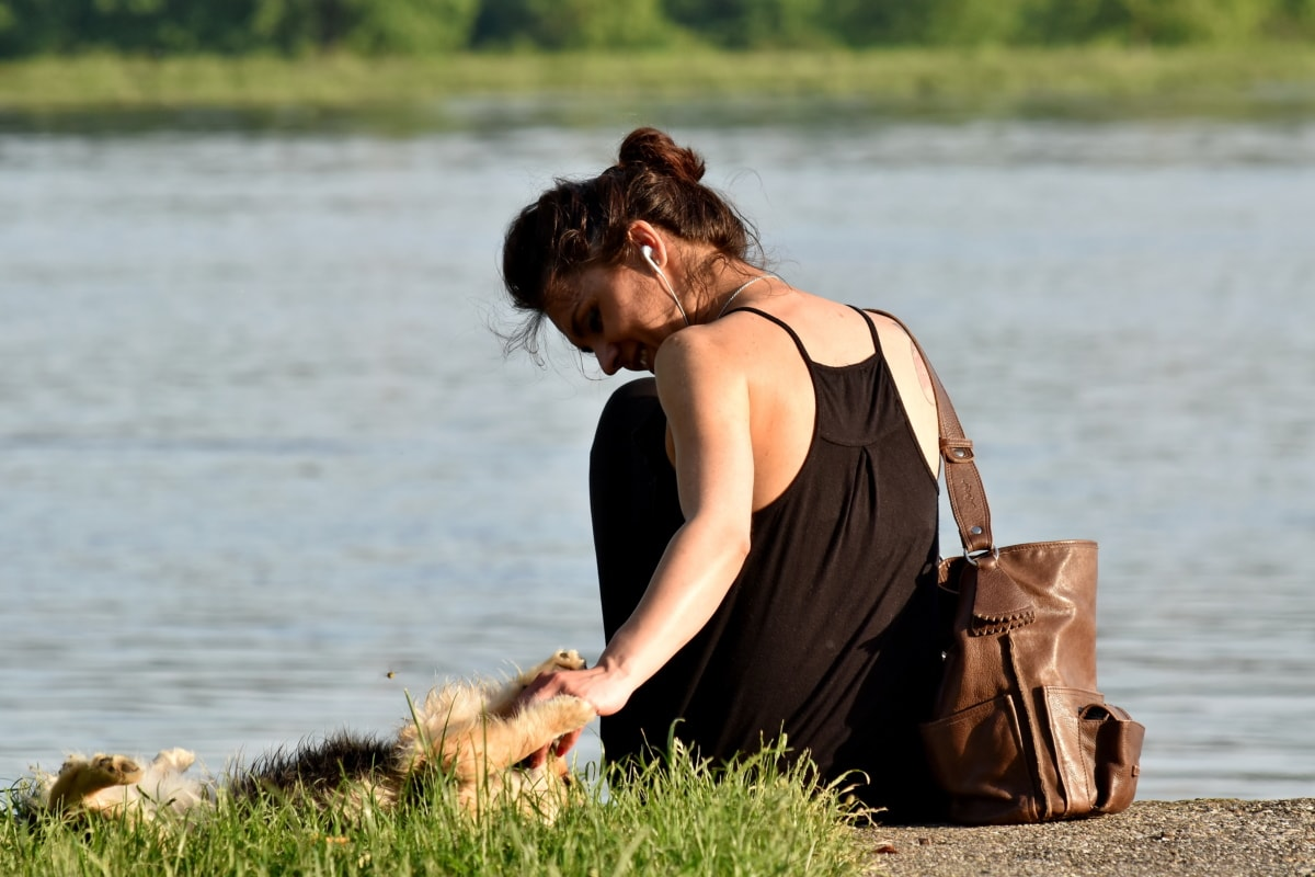 hund, klänning, njuter av, gräs, frisyr, Snygg tjej, åstranden, naturen, vatten, sommar
